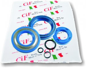 Complete corteco oil seal kit for Ape 50