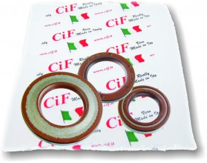 Complete Viton oil seal kit for Ape 220 MP 501 up to 1982
