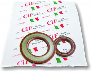 Complete Viton Oil Seal Kit for Ape 220 TM P602-P703-Car-MP P501-P601